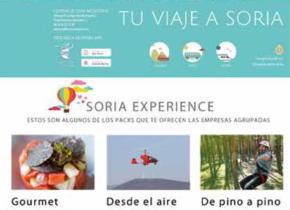 Web Ayuntamiento de Soria